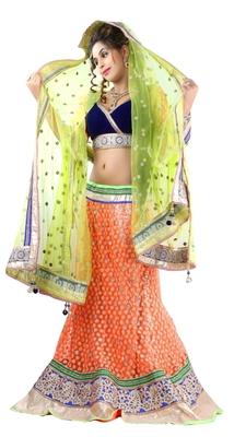 Designer Net Fabric  Multi Colored Embroidered Lahenga Choli