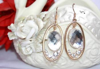 Shimmering Fashion Earrings