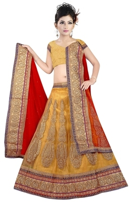 chiku Indian Traditional Designer lehenga.