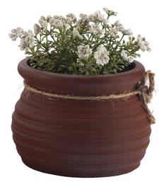 Buy Traditional Look Brown Planter Pot pot online