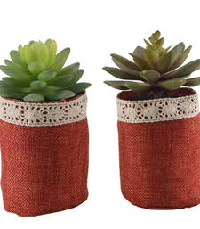Buy Set of 2 Green Artificial Plants with Maroon Pots pot online
