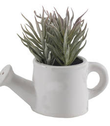 Buy Snow Look Artificial Plant with White Ceramic Pot pot online