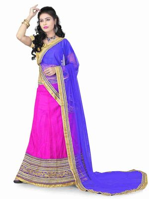 pink embrodered net designeer lehngha lehngha choli with blouse