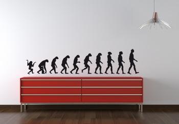 Medium Evolution Wall Decal Modern Graphic