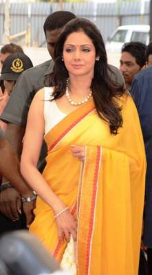 Sridevi Fenta Bollywood Replica Saree