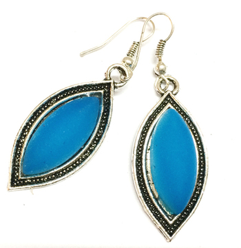 Blue Casual Earrings
