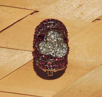 Elusive Red Silver Brooch