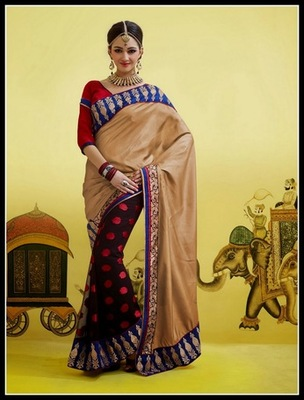 Attractive Brown & Saddle Brown Embroidered Saree