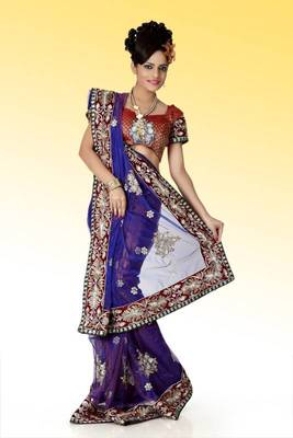 Bollywood Blue net saree with blouse (anj567)