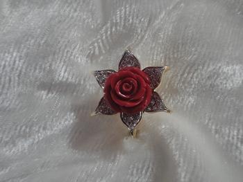 Red flower petal (r-36)