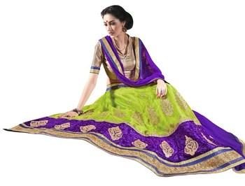Multicolor embroidered net lehenga choli