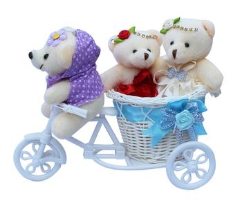 Cute Bubbly Teddybear Basket Cycle Valentine Gift Set