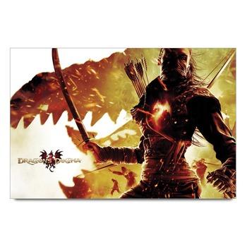 Dragons Dogma Poster