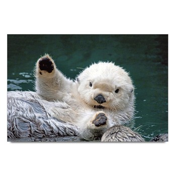 Cute Sea Otters Poster