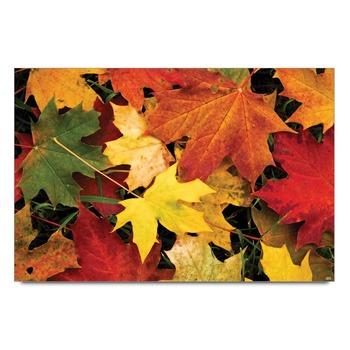 Autumn Leaves Poster