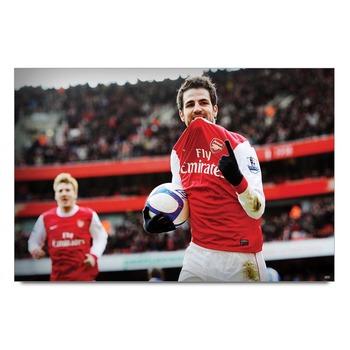 Cesc Fabregas Football    Poster