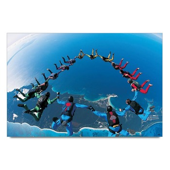 Sky Diving Scene   Poster