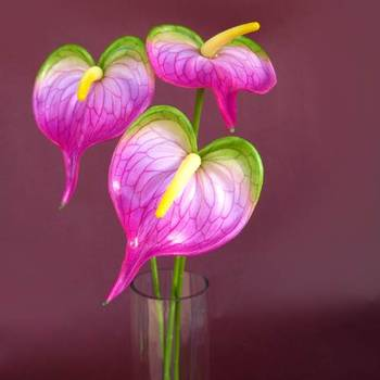 Anthuriums Natural Touch Purple (Artificial)