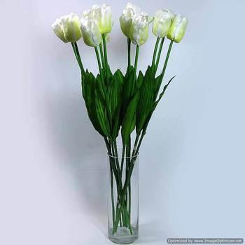Elegante Tulipe