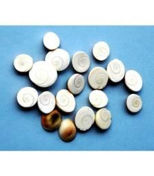 Gomti chakra spiral set of 5 prosperity chakra healing jewellery