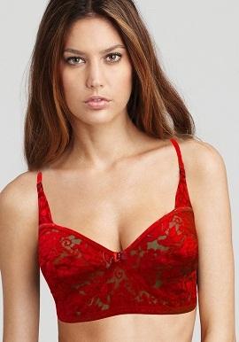 Sexy Red Posh Net Cut Work Bra - bravehood - 1596659 7b61523f9