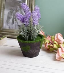 Buy Lovely & Pretty Purple 18.5 CM Artificial Floral Plant flower-arrangement online