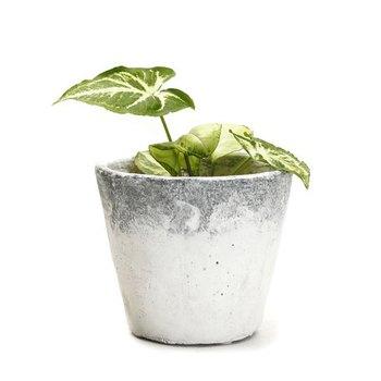 Conical Shape Stone Finish Stone Planter Pot