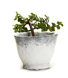 Buy Frosted Finish White and Grey Stone Bowl pot online