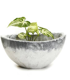 Buy Through design Frosted Finish White and Grey Stone Bowl pot online