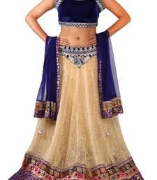 Buy RAAS NET, VELVET Beige, Blue Chaniya Choli velvet-saree online