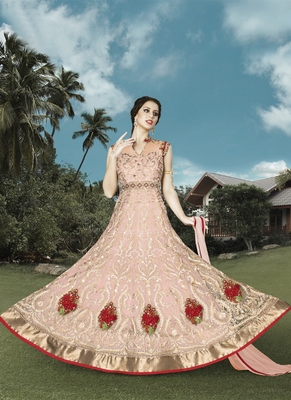 Baby pink embroidered net salwar