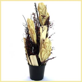 Beautiful Acrylic Vase Dried Accessory Arrangement