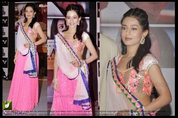 Amrita Rao Pink Bright Net Bollywood Saree