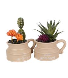 Set of 2 Artificial Cactus Plant with Kettle Style Pot