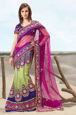 Beautiful Multi Colored Lehd Sari