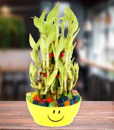 Buy Good Luck Bamboo Plant in a Smiley bowl thanksgiving-gift online