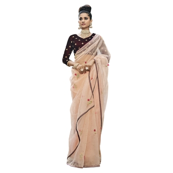 Multicolor embroidered tissue saree with blouse