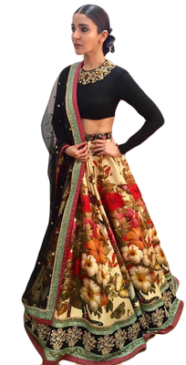 Multicolor Embroidered Velvet Blouse Unstitched Lehenga