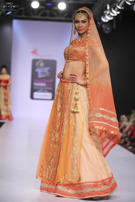Light peach embroidered net stitched lehenga with dupatta