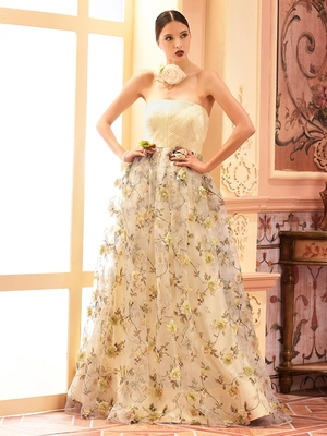 Khwaab Tissue Printed Strapless Ball Gown