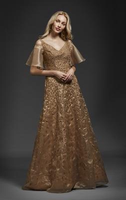 Khwaab Golden Organza Aline Gown