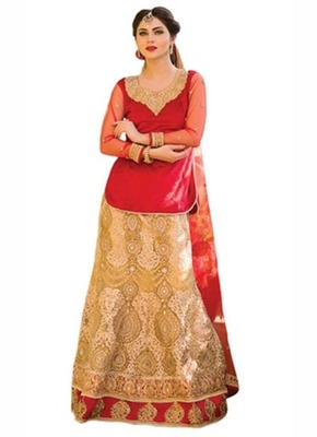 Red embroidered velvet  lehenga-choli