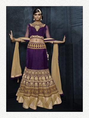 Purple color Stunning Velvet Lehenga Choli