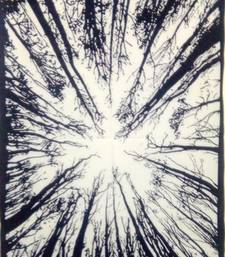 Forest tree White Color Tapestry Poster