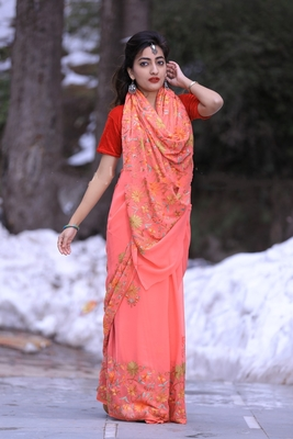 Carrot Pink Color Kashmiri Aari Work Embroidered Saree Enriched With Floral Paisley Pattern