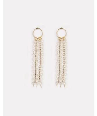 Hoop & Tassel Crystal Earrings