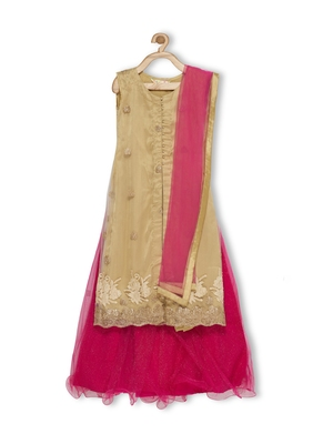 Pink Embroidered Faux Net Stitched Lehenga
