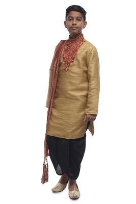 Fawn Embroidered Bhagalpuri Silk Boys Kurta Pyjama