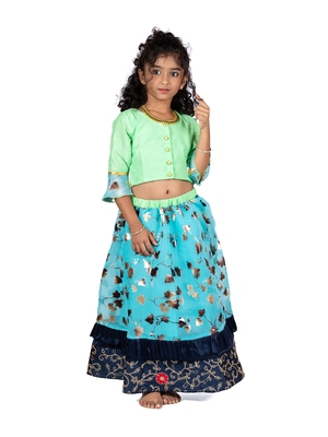 Green & Blue Organza Lehenga And Buttoned Top Set
