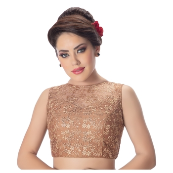 Brown High Neck Dupion Silk Full Net Padded Princess Cut Sleeveless Readymade Saree Blouse